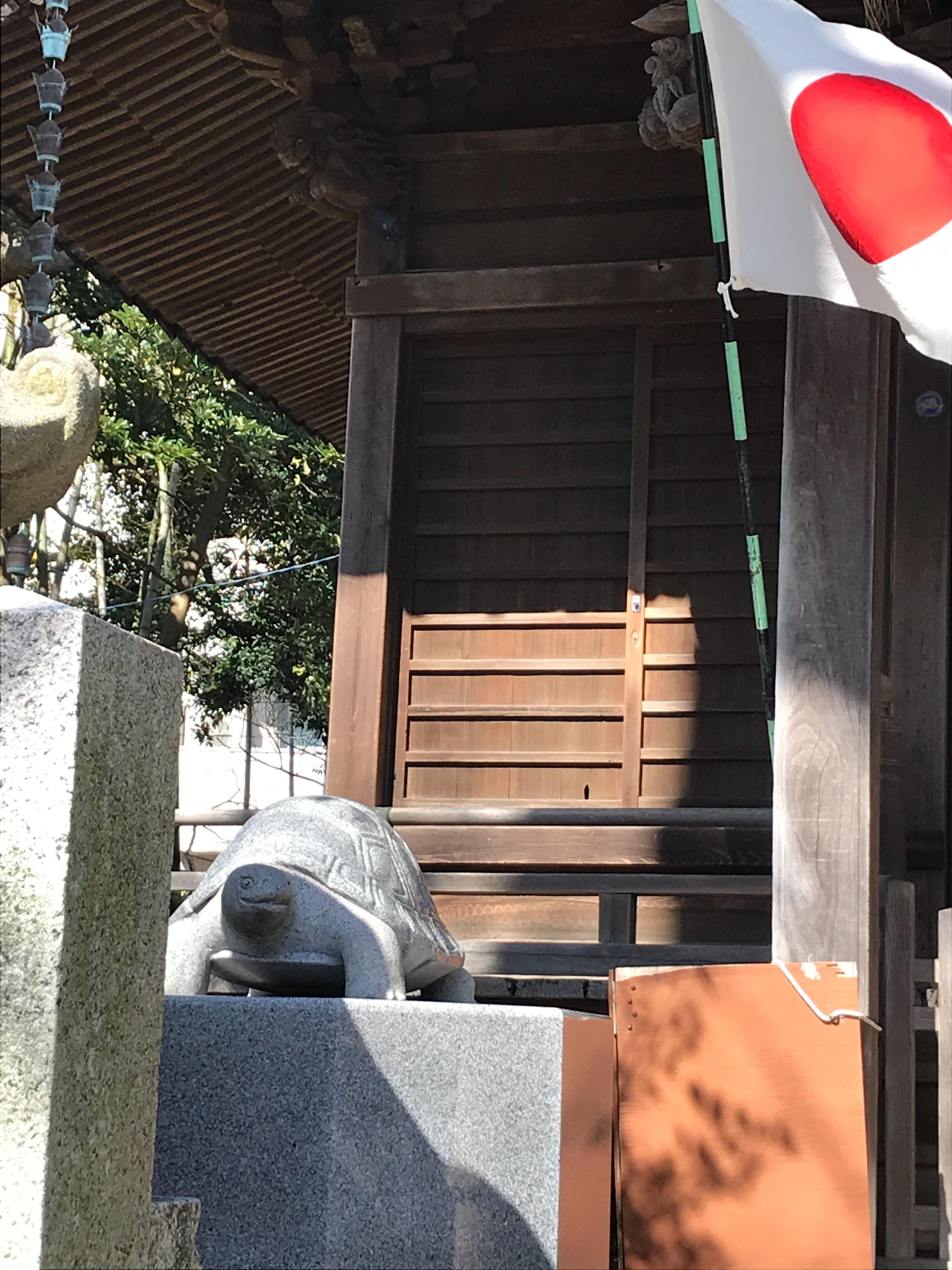 f:id:hatakofuru:20200226073819j:image