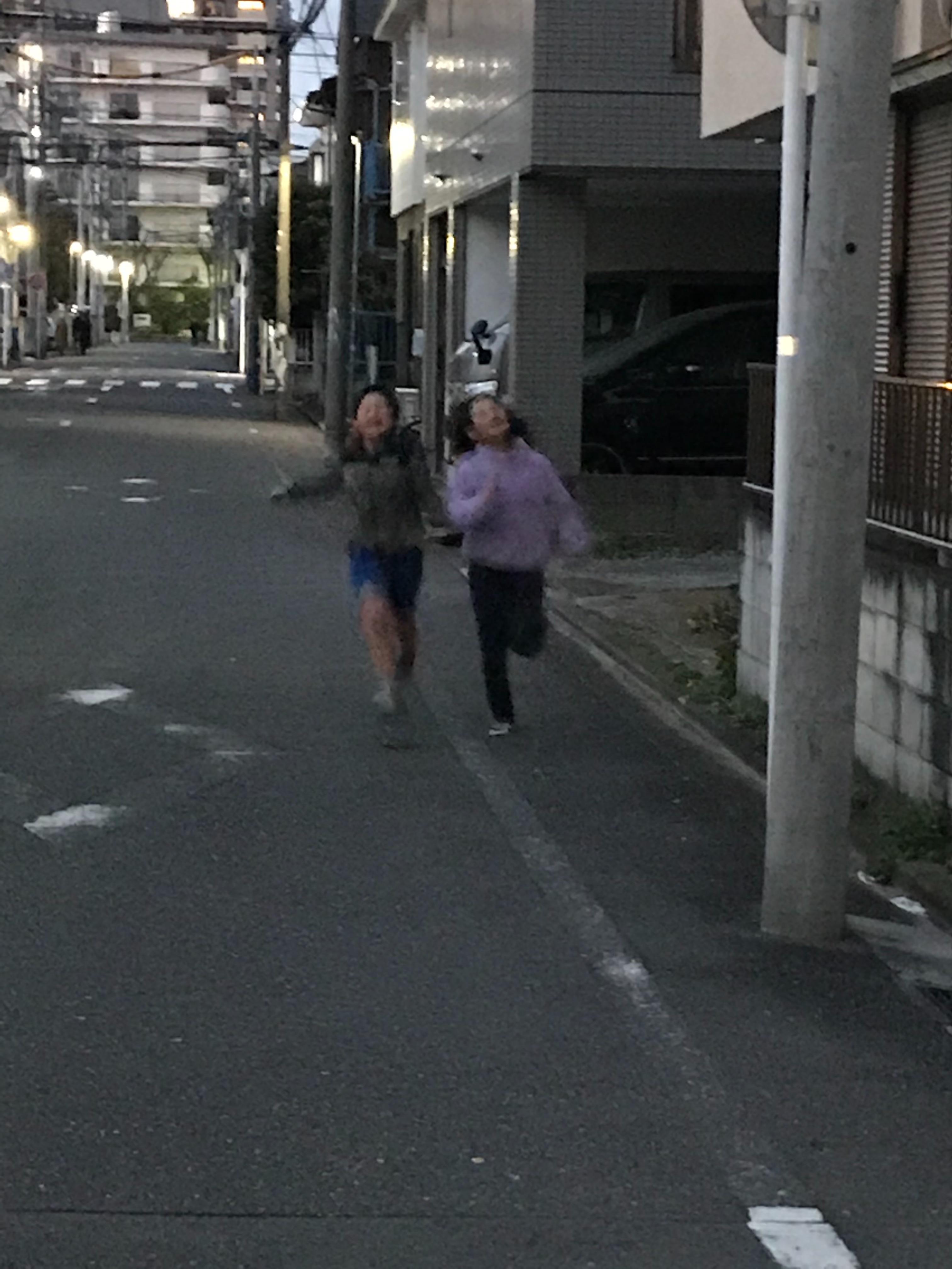 f:id:hatakofuru:20200316224632j:image