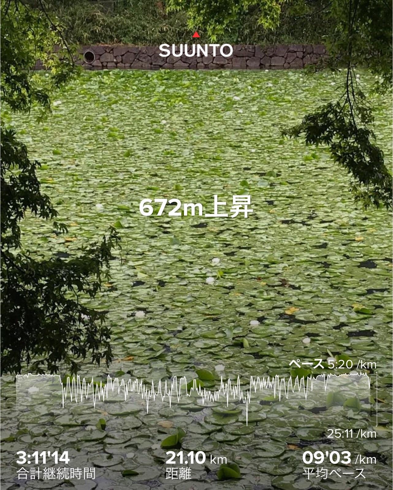f:id:hatakofuru:20200519102522j:image