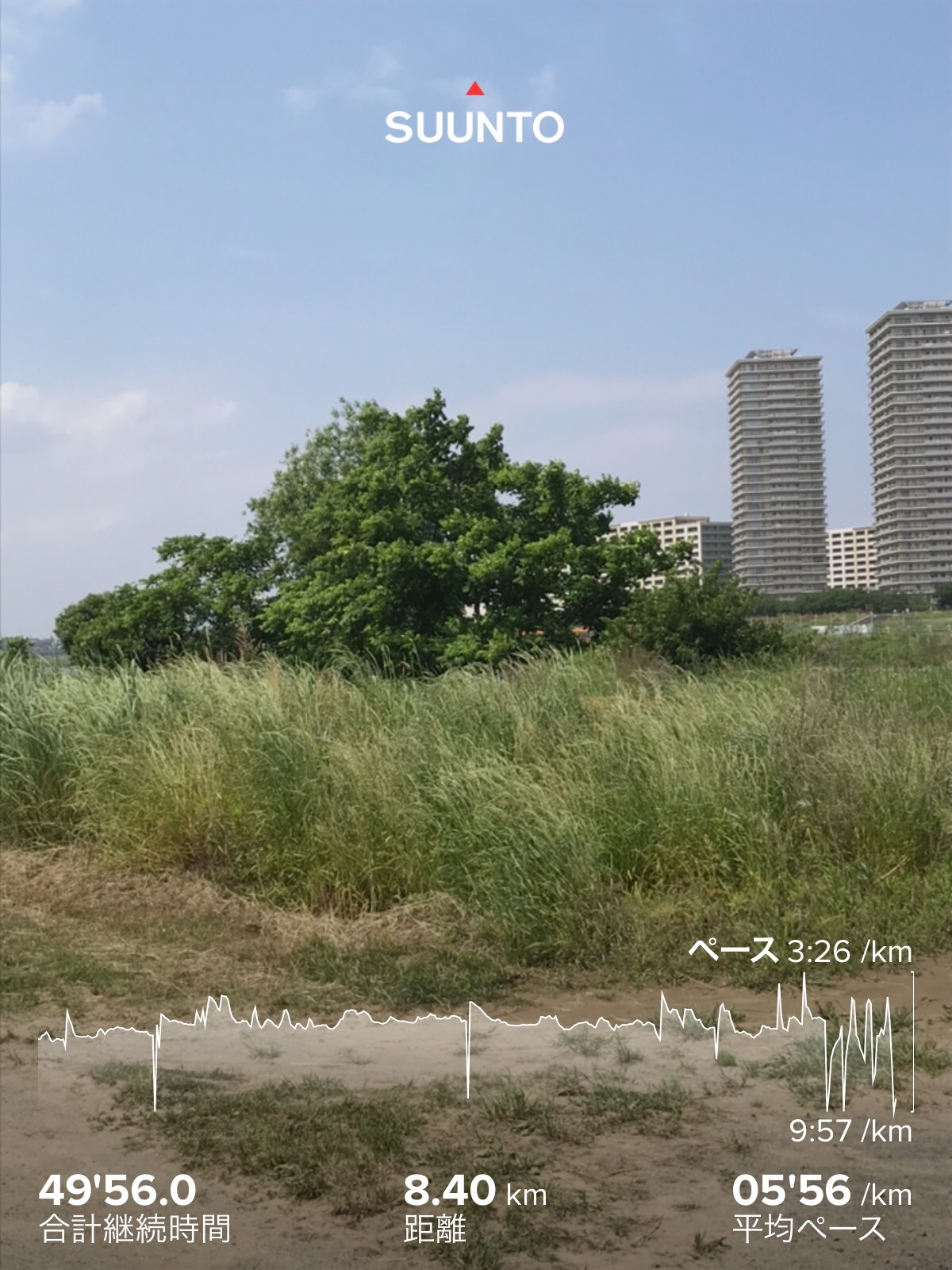 f:id:hatakofuru:20200529061255j:image