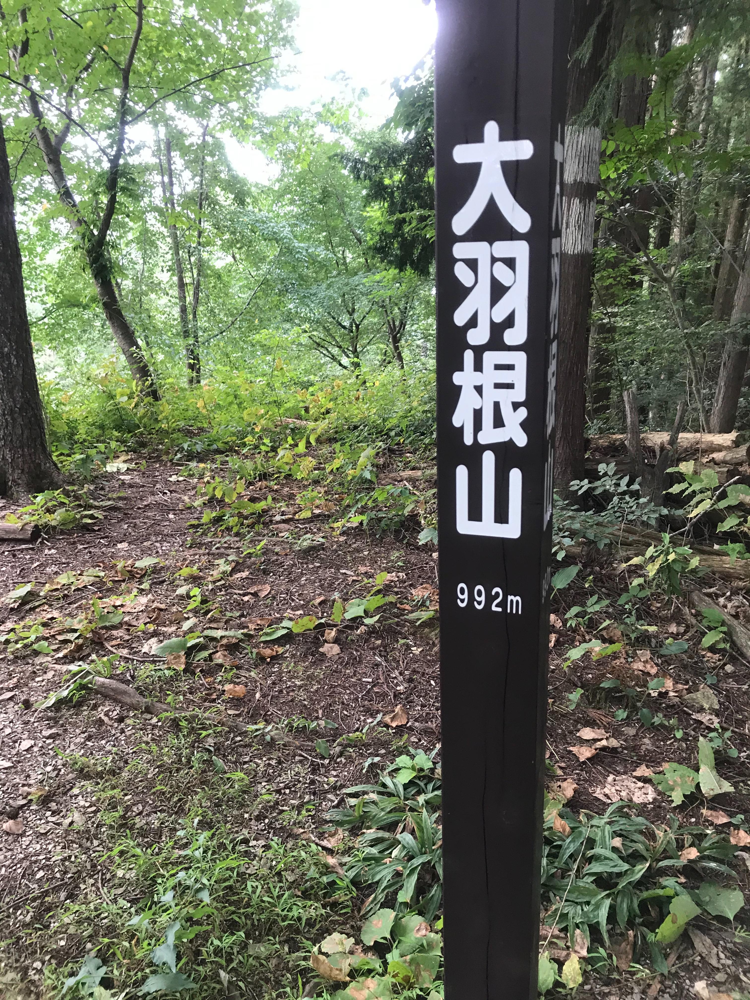 f:id:hatakofuru:20200826074144j:plain