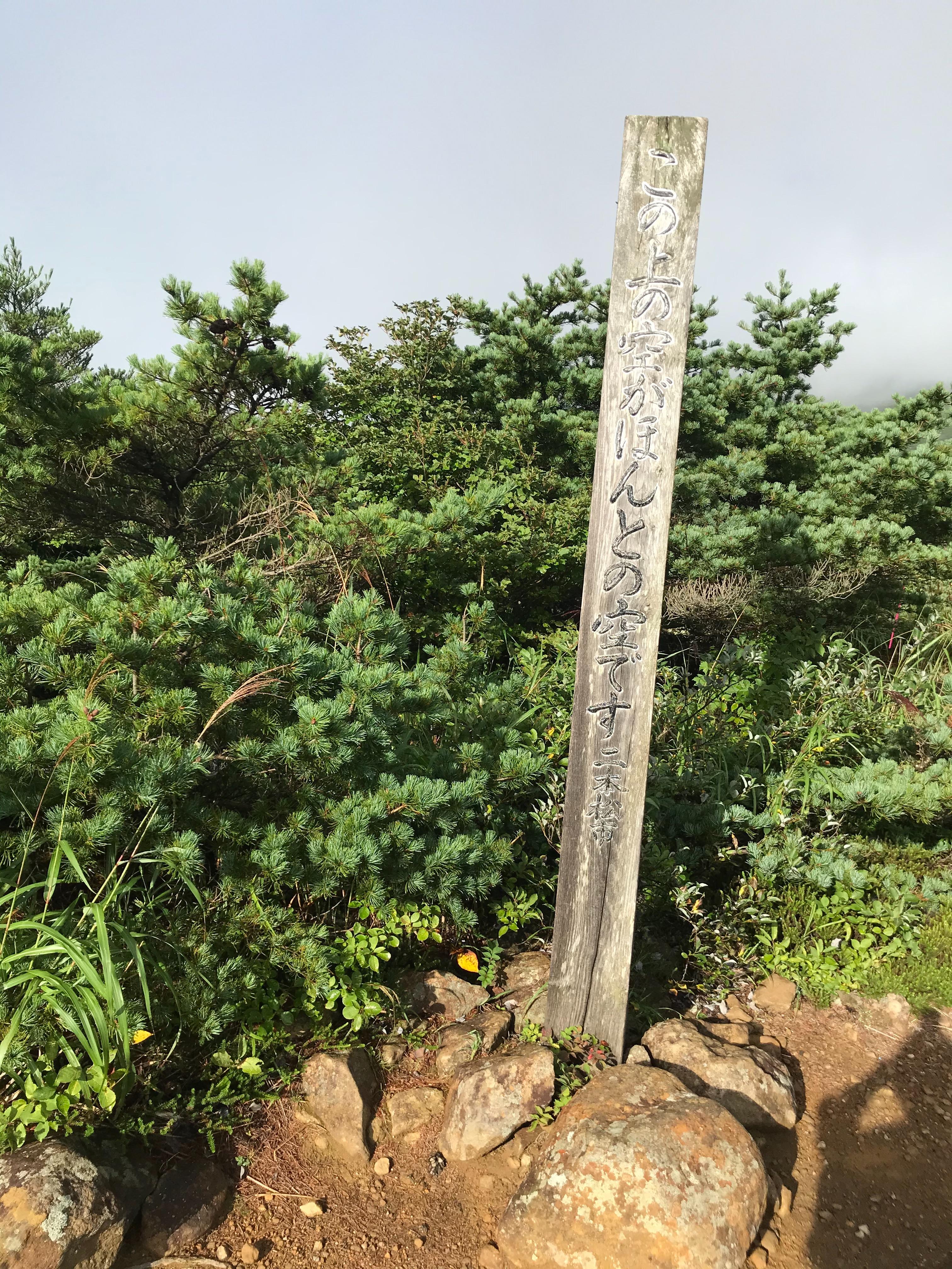 f:id:hatakofuru:20200908204857j:plain