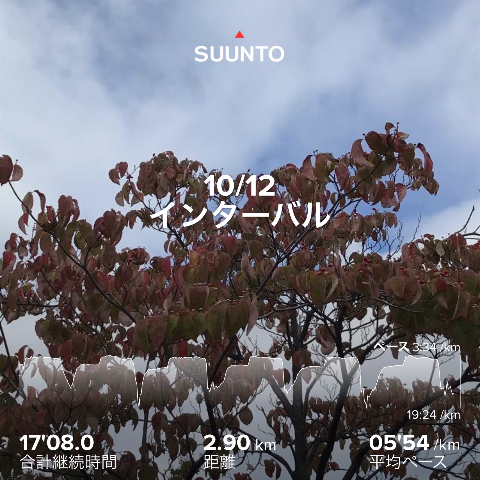 f:id:hatakofuru:20201014125129j:plain