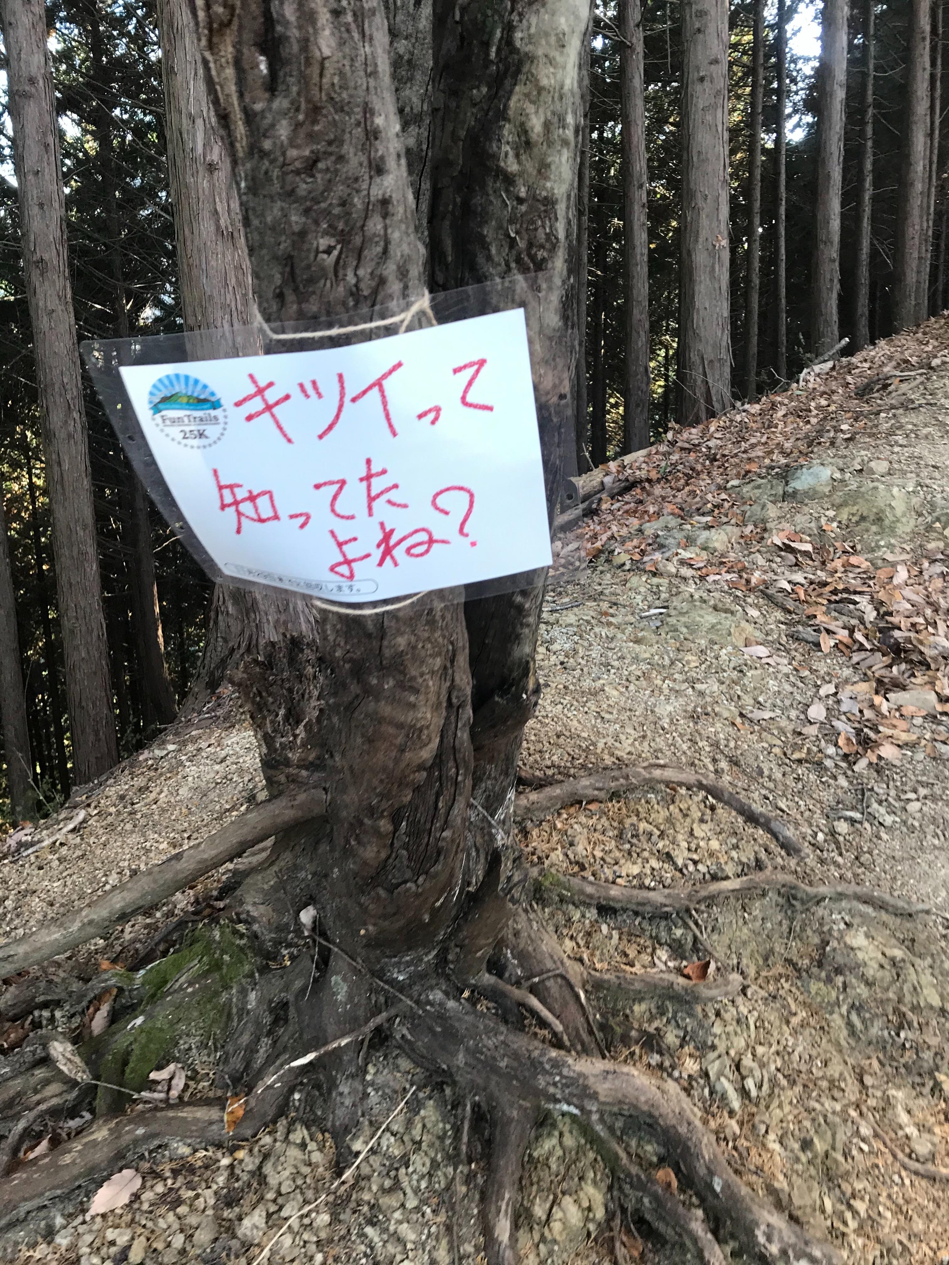 f:id:hatakofuru:20201124163250j:plain