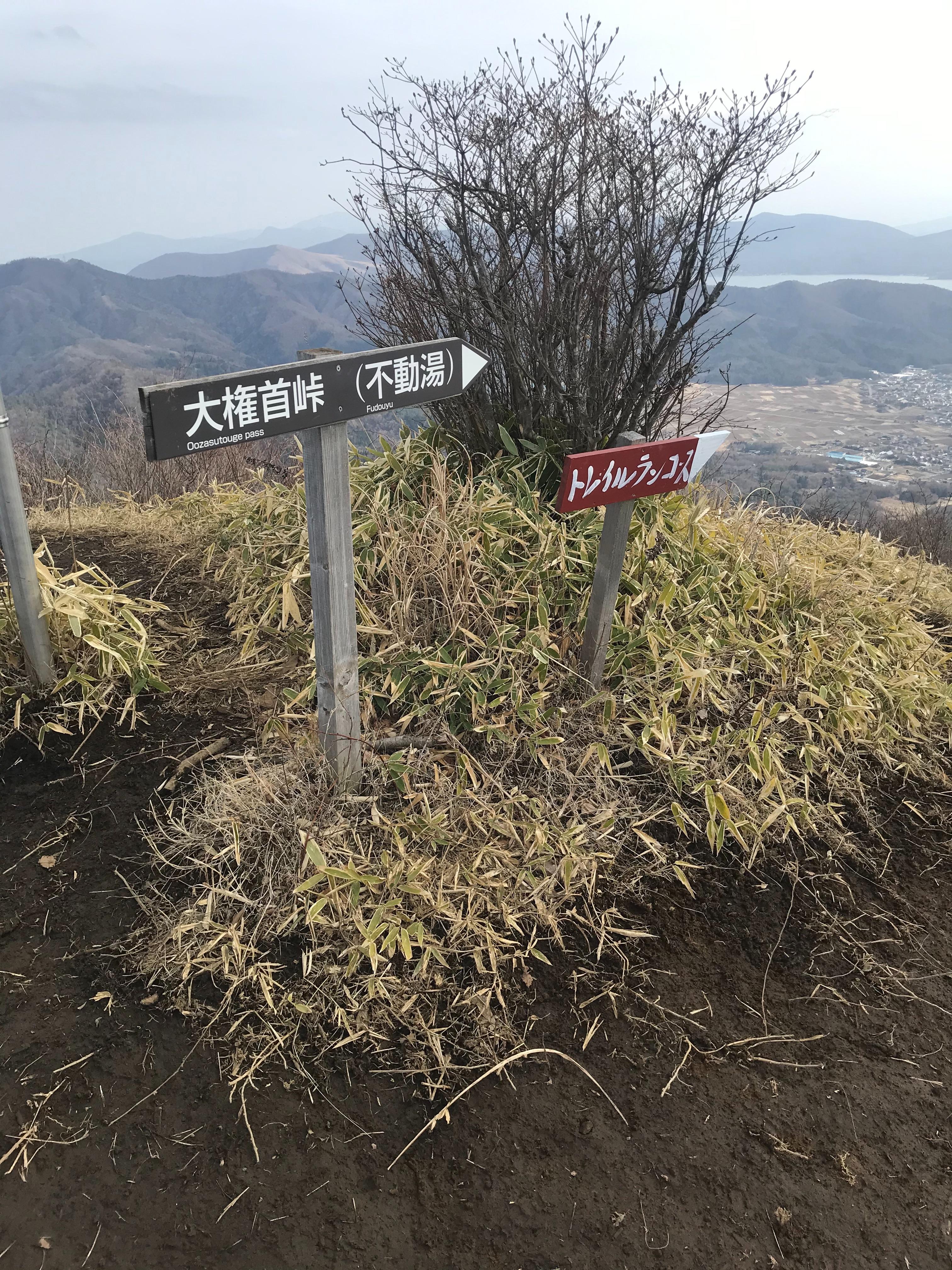 f:id:hatakofuru:20210320204003j:plain