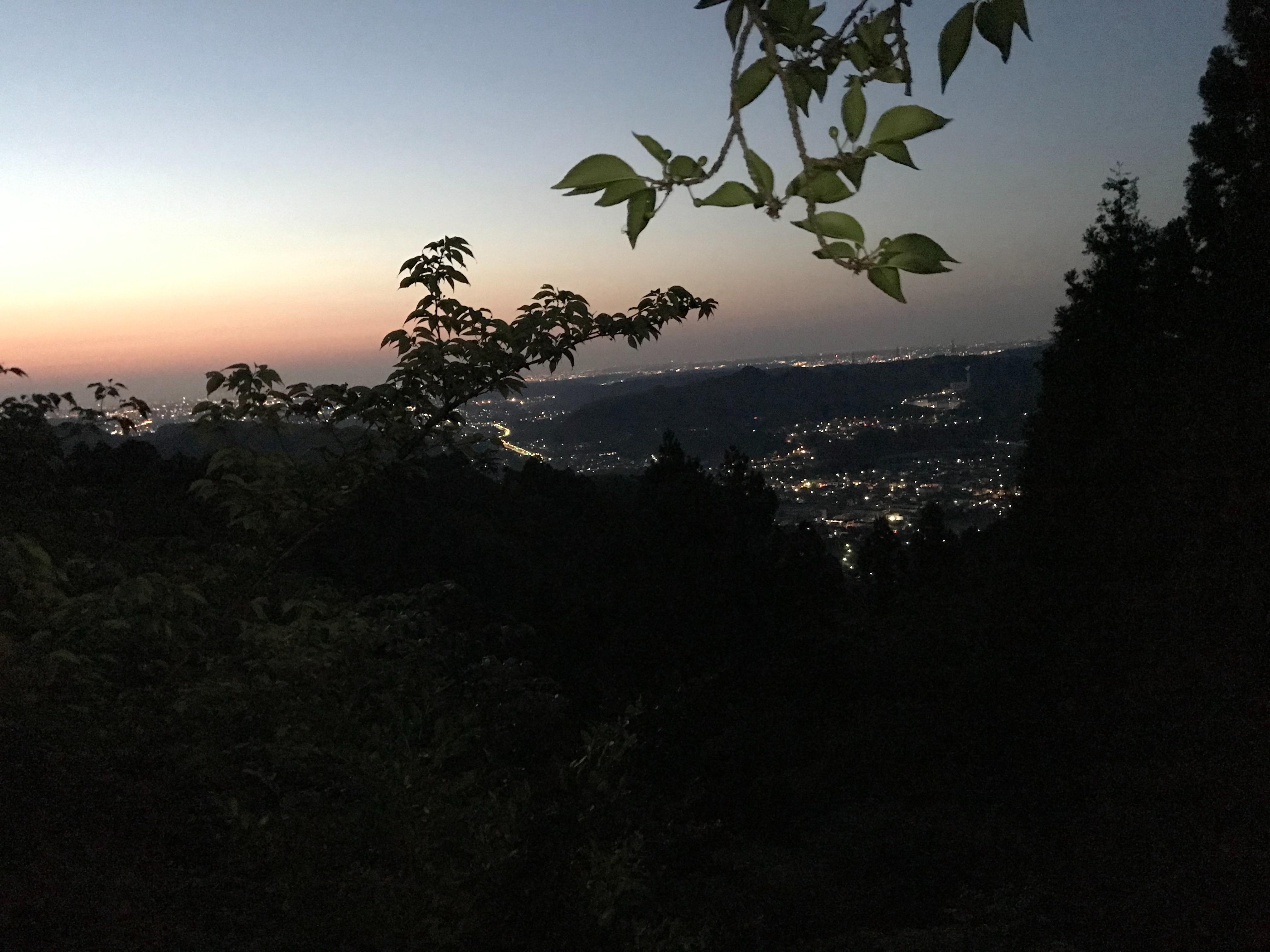 f:id:hatakofuru:20210429164032j:plain