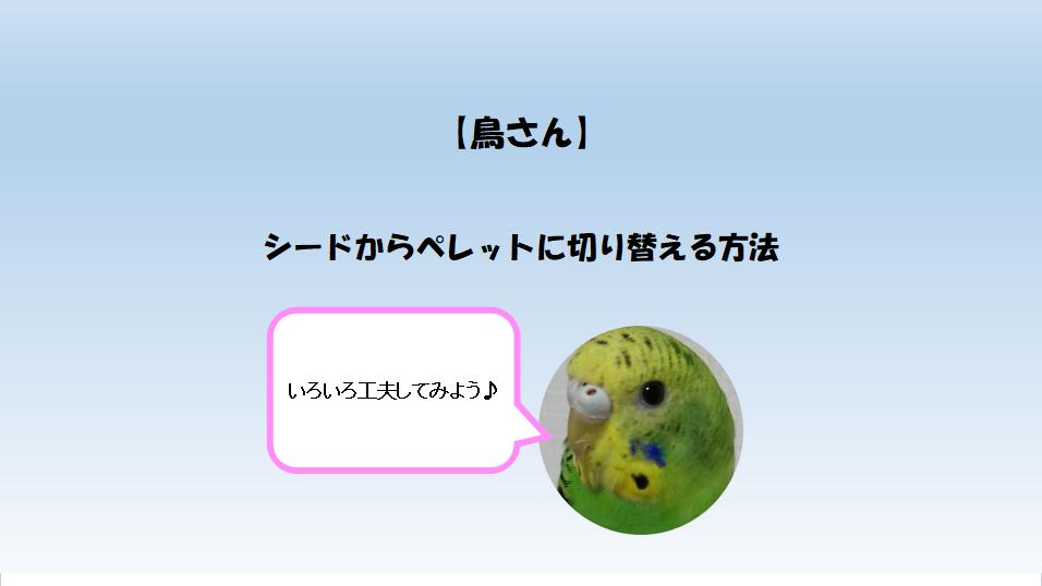 f:id:hatarakitakunai30:20201123005039p:plain