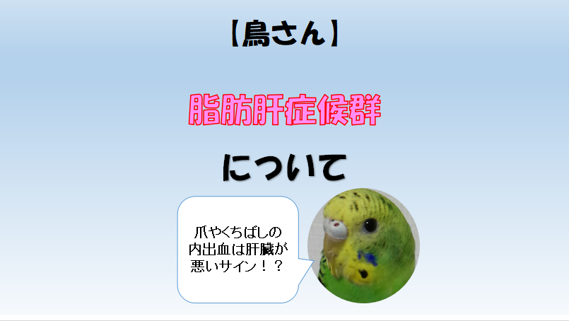 f:id:hatarakitakunai30:20210622143336p:plain