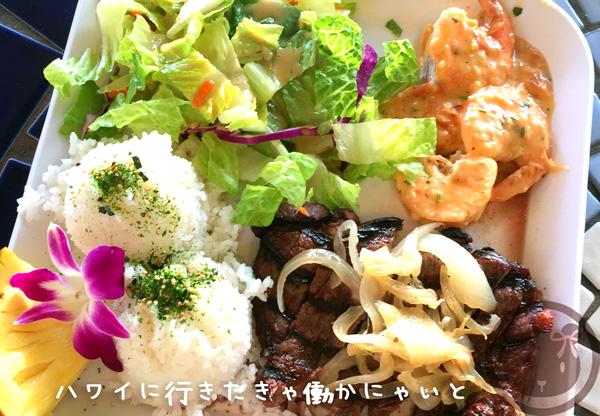 f:id:hatarakuasobu:20170901050153j:plain