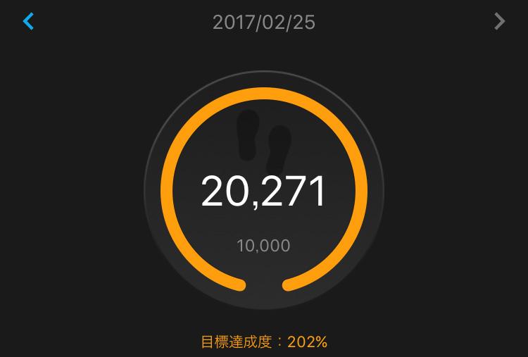 f:id:hatatinokarada:20170227162202j:plain
