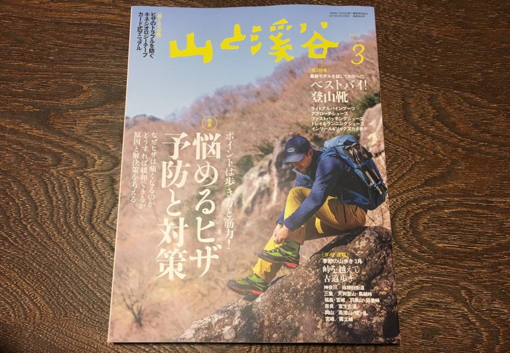 f:id:hatatinokarada:20170306214150j:plain