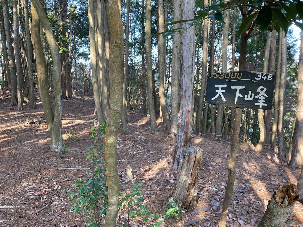 f:id:hatatinokarada:20210212204910j:image