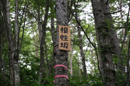 f:id:hatayasan:20120819144459j:image