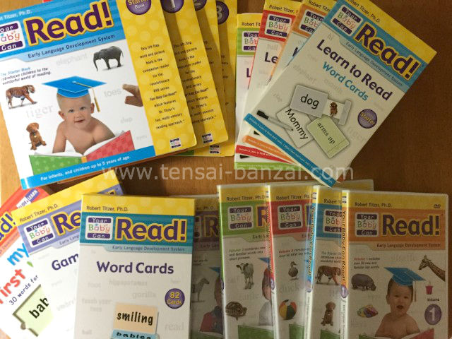 Your Baby Can Read!デラックスセットの一部