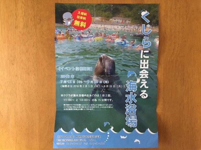 くじらに出会える海水浴場2018年チラシ