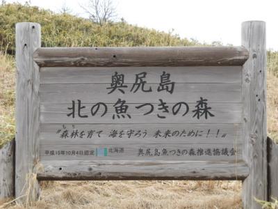 f:id:hatekota810:20100429153458j:image