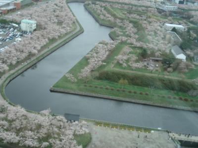 f:id:hatekota810:20100521184526j:image