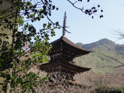 f:id:hatekota810:20110104195247j:image