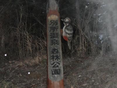 f:id:hatekota810:20110130162222j:image