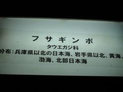 f:id:hatekota810:20110720100741j:image