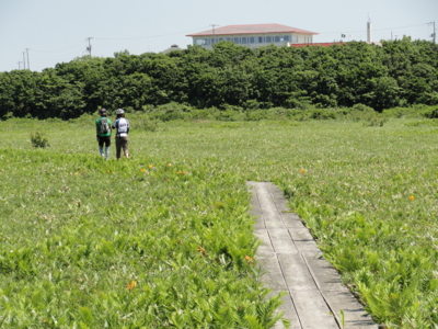 f:id:hatekota810:20110808195810j:image