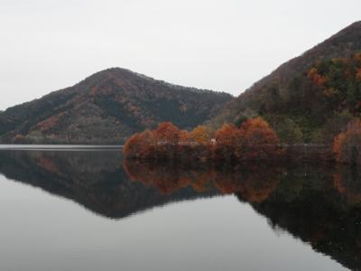 f:id:hatekota810:20111112071844j:image
