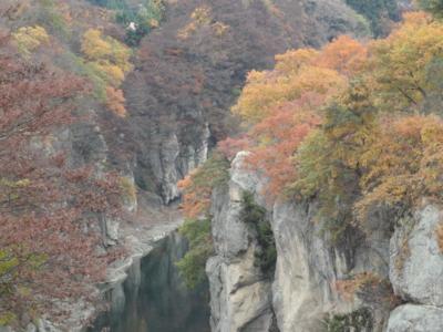 f:id:hatekota810:20111118201216j:image