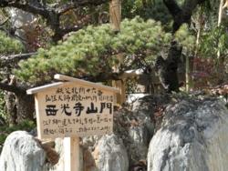 f:id:hatekota810:20111124195956j:image