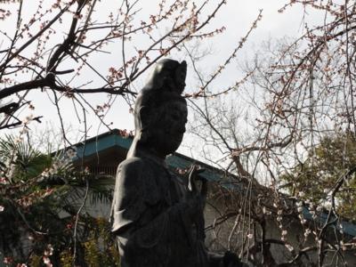f:id:hatekota810:20111124220229j:image