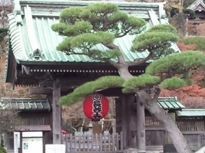 f:id:hatekota810:20111208200323j:image
