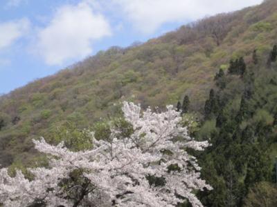 f:id:hatekota810:20120506194937j:image
