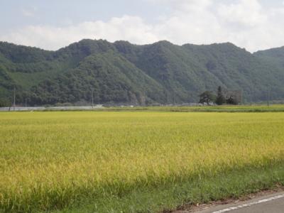 f:id:hatekota810:20120911214351j:image