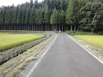 f:id:hatekota810:20120913200027j:image