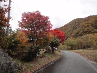 f:id:hatekota810:20121101190858j:image