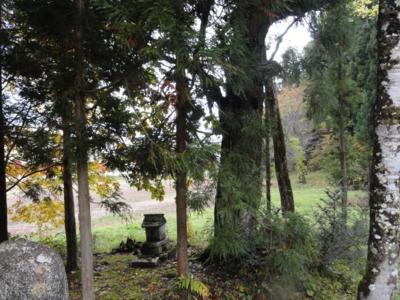 f:id:hatekota810:20121111141907j:image