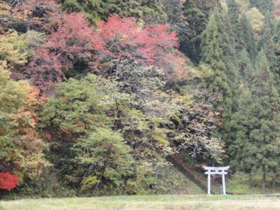 f:id:hatekota810:20121125173839j:image