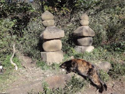f:id:hatekota810:20121221195413j:image