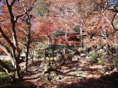 f:id:hatekota810:20121223190159j:image