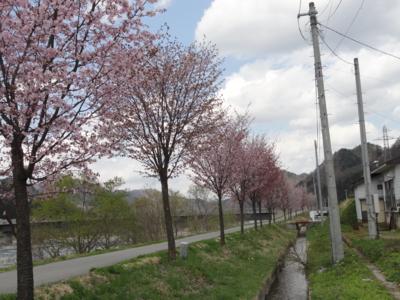f:id:hatekota810:20130628192009j:image