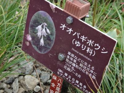 f:id:hatekota810:20130830191340j:image