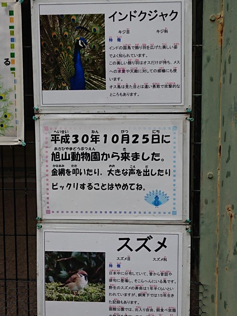 f:id:hatekota810:20210822142307j:plain