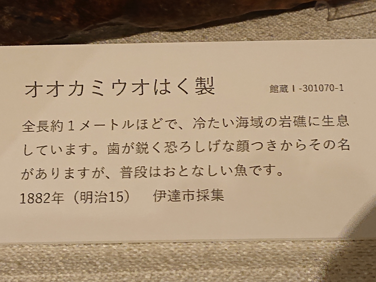 f:id:hatekota810:20211010144626j:plain