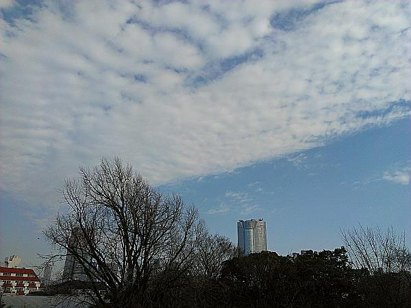 冬の空の写真