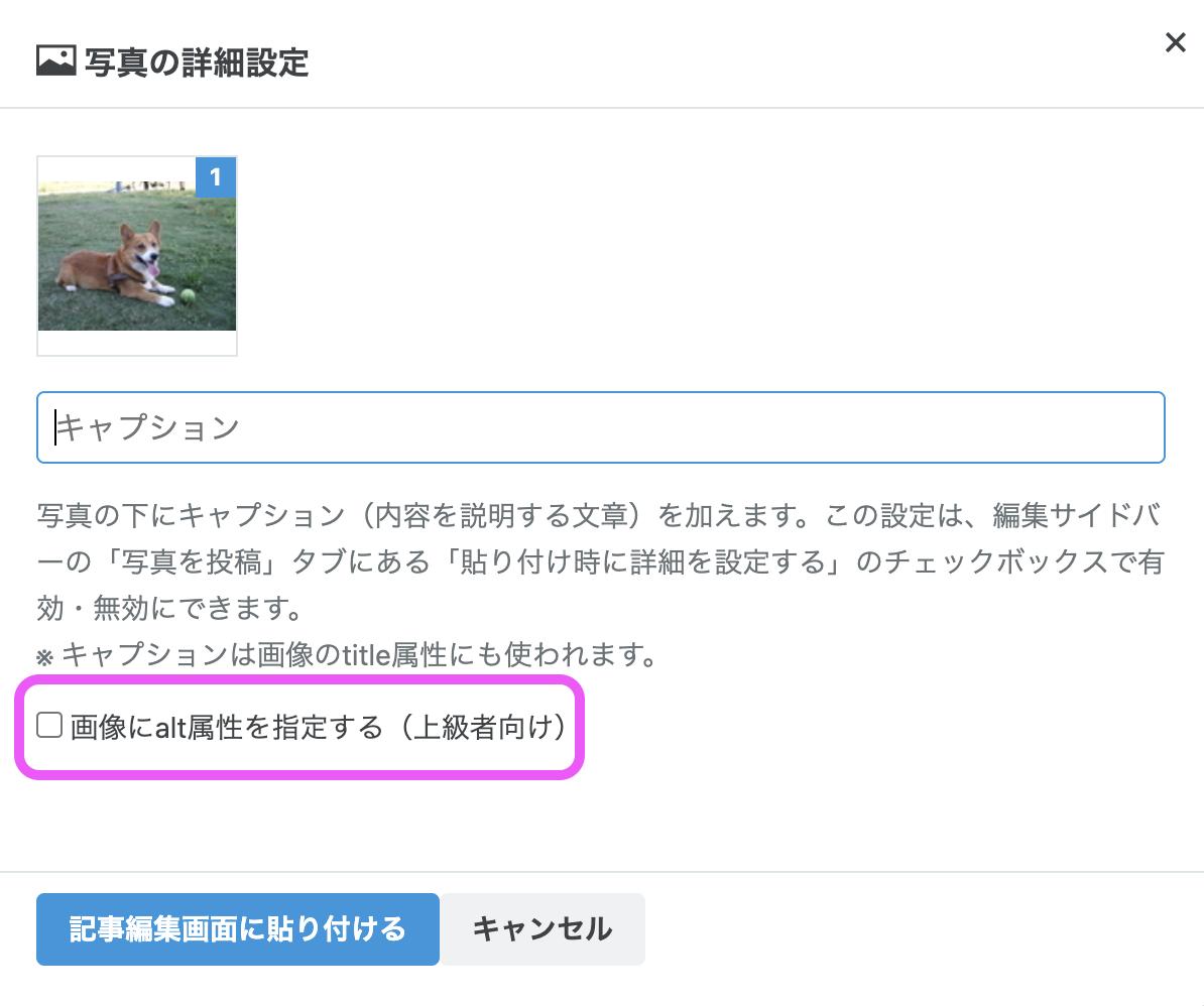 「写真の詳細設定」に配置された「画像にalt属性を指定する(上級者向け)」チェックボタンのスクリーンショット