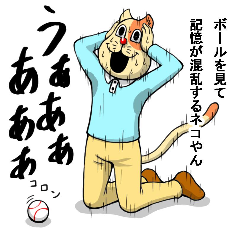 ボールを見て記憶が混乱するネコやん
