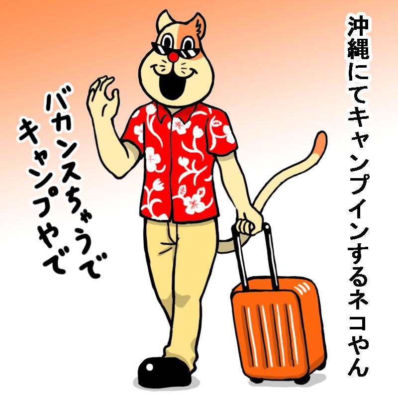 沖縄にてキャンプインするネコやん