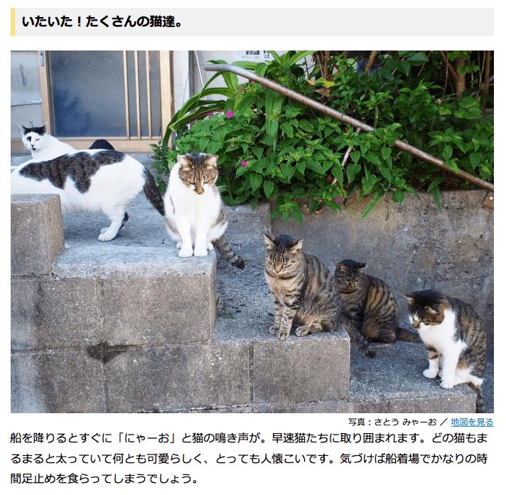 ネコ好きにおすすめ!博多から日帰り可能なネコ島「藍島」へ行こう! | 福岡県 | Travel.jp[たびねす]
