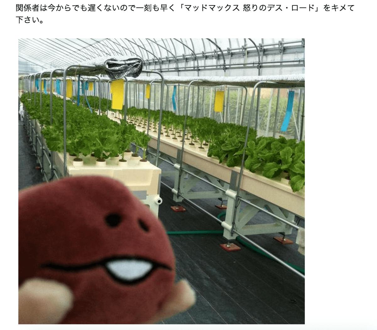 水耕栽培農家の視点から見る「マッドマックス 怒りのデス・ロード」|ITとゲームとメタル