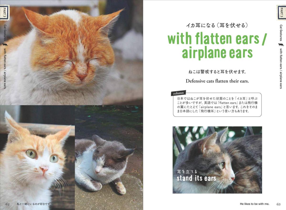 The Japan Times BOOKCLUB [ねこたん ねこの英単語...]