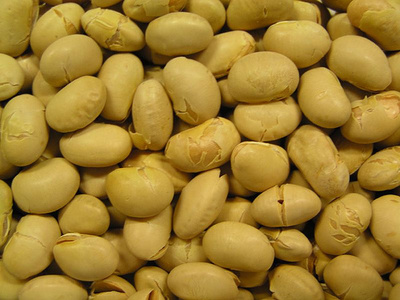 豆 の 豆 まき 金時豆